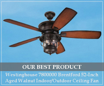 best outdoor ceiling fan stylish and functional
