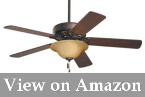 best ceiling fan with lights reviews