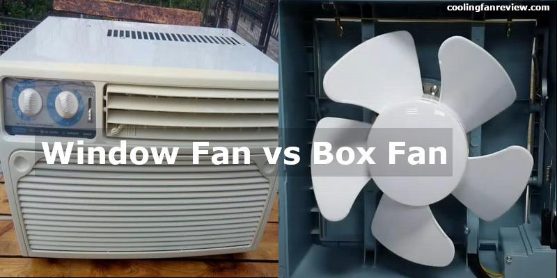 window-fan-or-box-fan